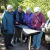 "Rugby Bilton Guild walking group visited Jephson Gardens in Leamington and tried to ""play a tune"" in the sensory gardens!"