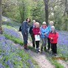 Wetherby walking group enjoyed a day out in bluebell woods.